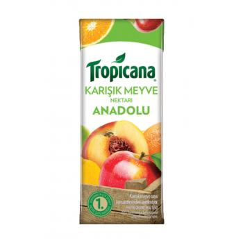 Anadolu Meyvelerinden Meyve Suyu 200 ml
